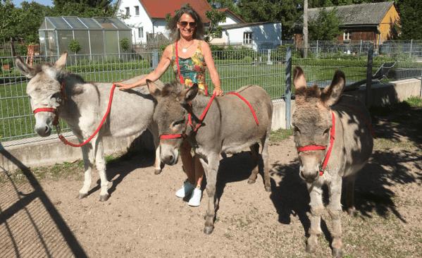 © Kronauer, Irmgard Kronauer mit ihren Eseldamen