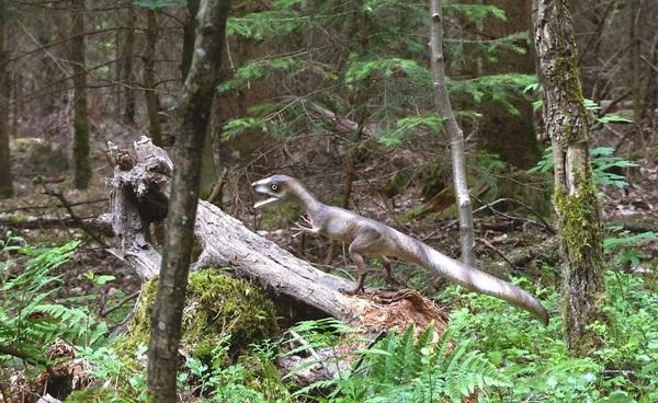 © Dinosaurierpark Altmühltal
