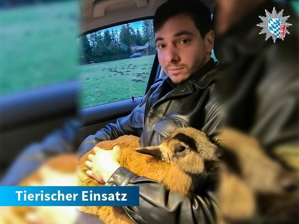 © Polizei Kelheim / Polizeipräsidium Niederbayern